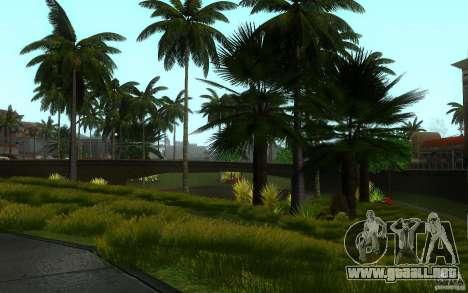 Vegetación perfecta v. 2 para GTA San Andreas novena de pantalla