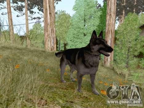 Hunting Mod para GTA San Andreas octavo de pantalla