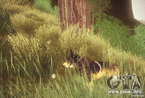 Hunting Mod para GTA San Andreas segunda pantalla
