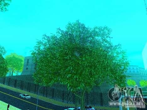Nuevo Color Mod para GTA San Andreas sucesivamente de pantalla