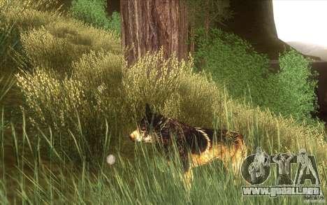 Wild Life Mod 0.1b para GTA San Andreas tercera pantalla