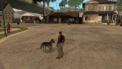 Perro en GTA San Andreas
