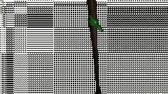 Pedacitos con un brazalete verde