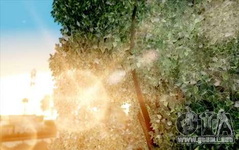 Atmosphere realistic autumn v1.0 para GTA San Andreas sexta pantalla