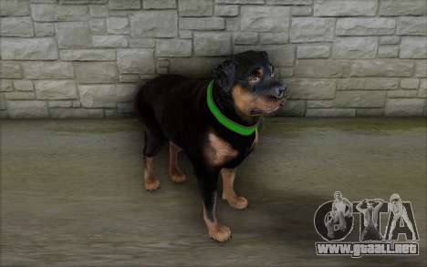 Rottweiler from GTA 5 para GTA San Andreas