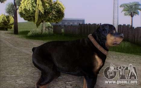 Rottweiler from GTA 5 para GTA San Andreas segunda pantalla