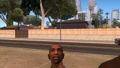 La cámara en el GTA V