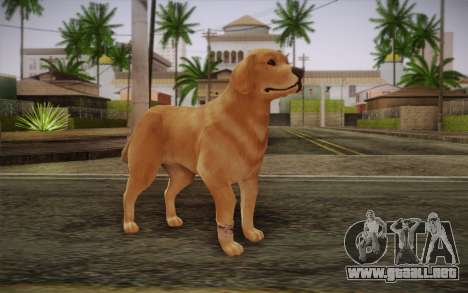 Rottweiler para GTA San Andreas