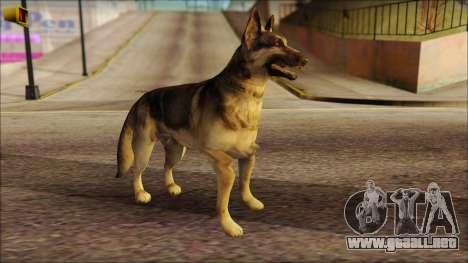 Dog Skin v2 para GTA San Andreas