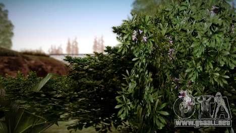 Graphic Unity v3 para GTA San Andreas quinta pantalla