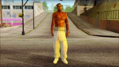 Plen Park Prims Skin 6 para GTA San Andreas