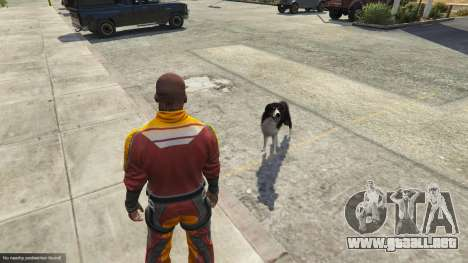 GTA 5 Animal Ark Shelter sexta captura de pantalla