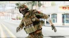 Global Warfare Germany